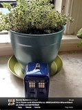 Bonnie Burton, author of The Star Wars Craft Book, has an herbal Whovian habitat in her home.