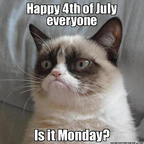 What a downer, that Grumpy Cat.  Source: Generator Meme