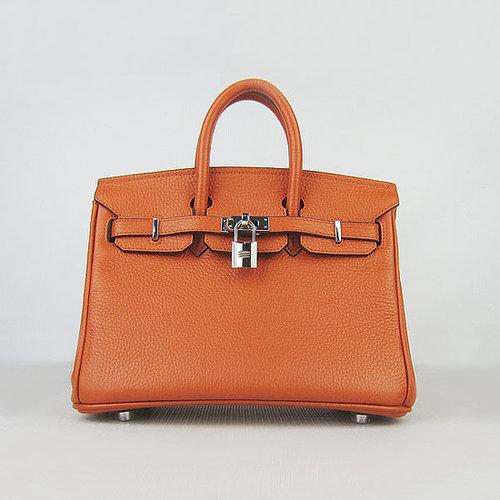 Hermes Birkin 25 with Silver Hardware (Potiron Orange)-versandhermes.com