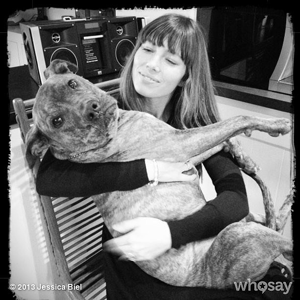 Jessica Biel cuddled with her dog, Tina. Source: Jessica Biel on WhoSay