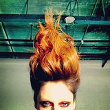 Coco Rocha had a pretty hair-raising experience while getting prepped for a photo shoot. Source: Instagram user cocorocha