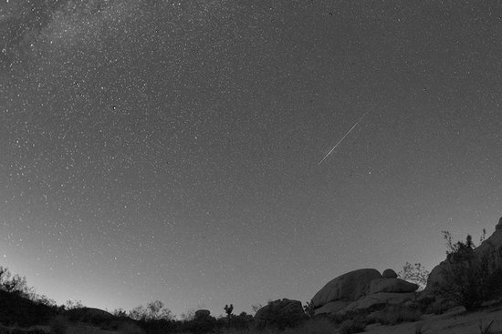 Joshua Tree National Park is a perfect backdrop for a mid-Summer meteor shower.  Source: Flickr user channone