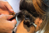 After you've curled a section with the curling iron, create a pin curl using a duck bill clip to set the look.
