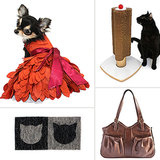 Get Fashionable With POPSUGAR Pets' September Must Haves