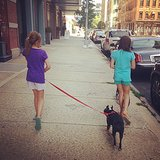 Grace Burns and her friend took turns with dog-walking duties.  Source: Instagram user cturlington