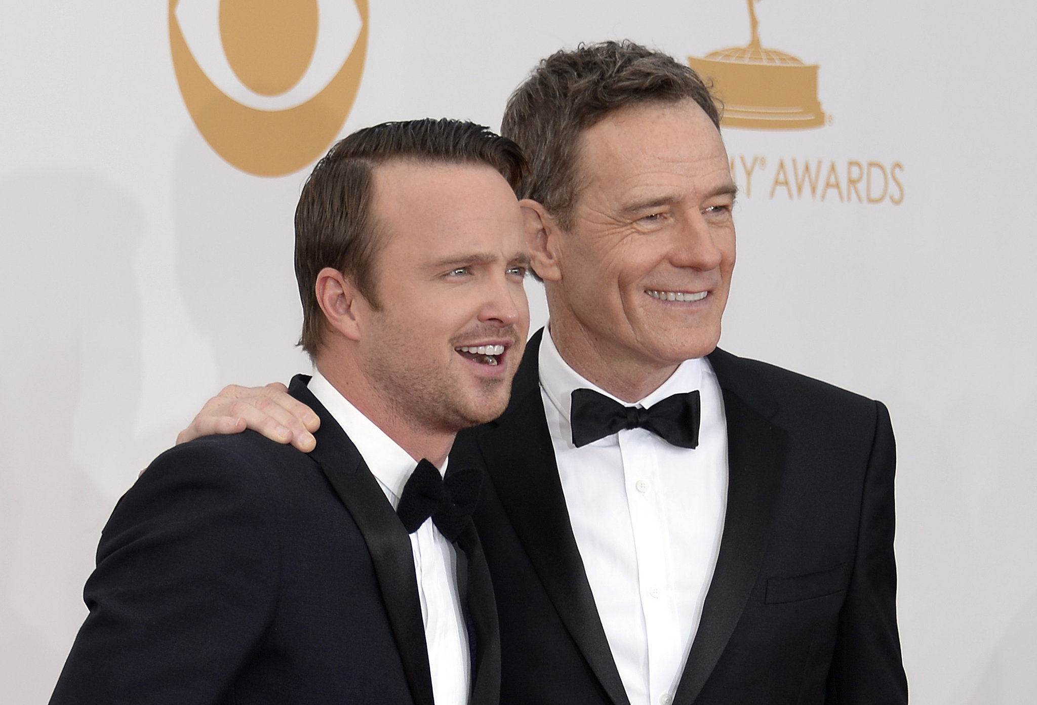 Breaking Bad duo Aaron Paul and Bryan Cranston posed on the red carpet together.