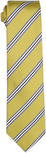 Trump Men's Tycoon Stripe