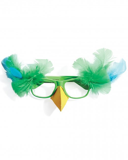 Turn Your Glasses Into a Feathered Friend