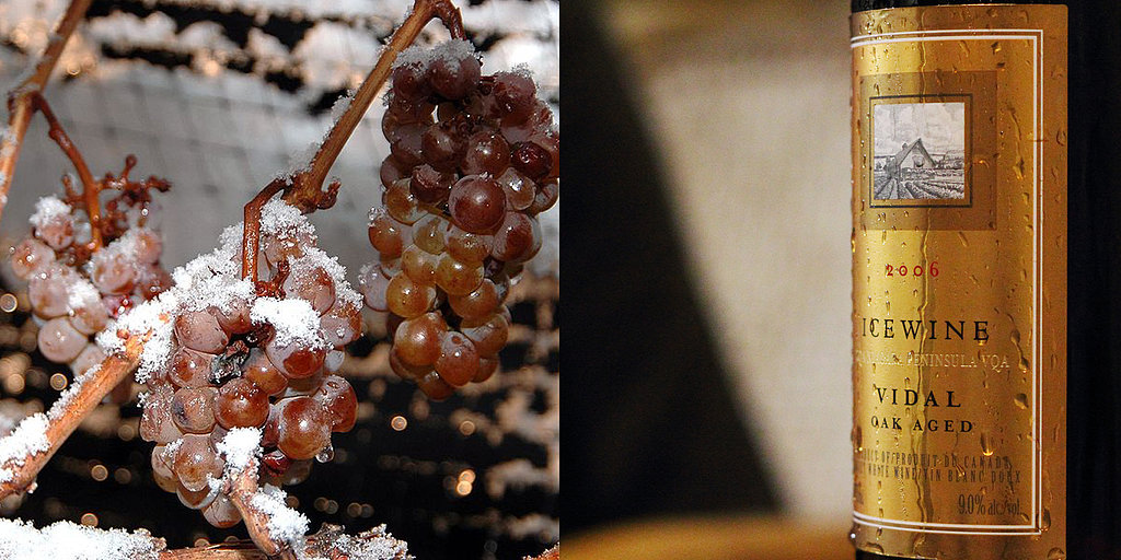 The Painstaking Process of Producing Ice Wine