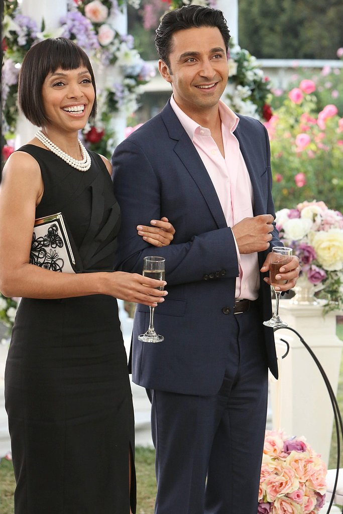 Cam (Tamara Taylor) and Arastoo (Pej Vahdat) attend the wedding.