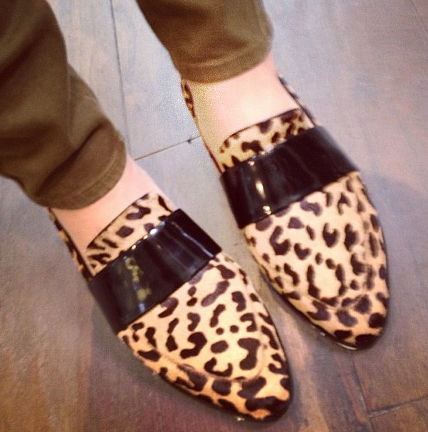 Who doesn't love a little leopard in their life?