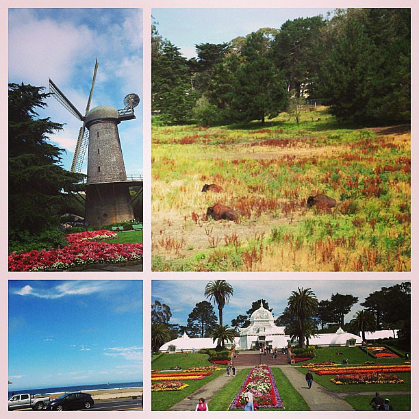 If you can, pick running routes that also feature beautiful scenery. A POPSUGAR Fitness editor snapped these shots while running through San Francisco's Golden Gate Park. Makes for a pretty inspiring workout!