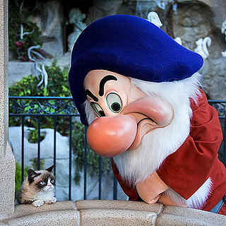 Grumpy Cat Meets Grumpy the Dwarf | Video