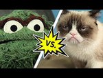 Oscar the Grouch vs. Grumpy Cat I Video
