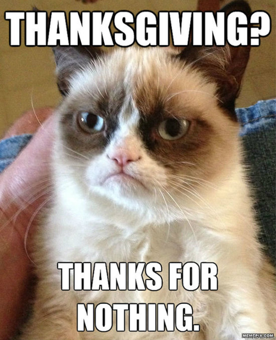 Grumpy Cat Sees Your Thanksgiving And Raises You A Frown