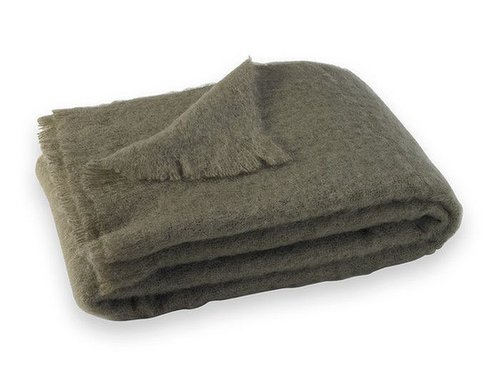 Get someone to throw that Snuggie away by giving them DwellStudio's Brushed Mohair Throw ($279). So luxurious and cozy! — Shannon Vestal, TV and movies editor