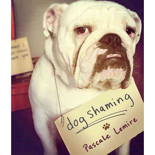 For the dog-lover who also dreams of publicly putting his four-legged friend in his place for the latest wallet-eating incident, gift a copy of Dog Shaming ($12, originally $15).
