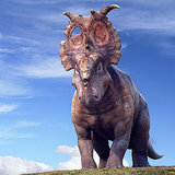 Walking With Dinosaurs Movie Clips