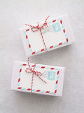Mail Stripes Gift Tag