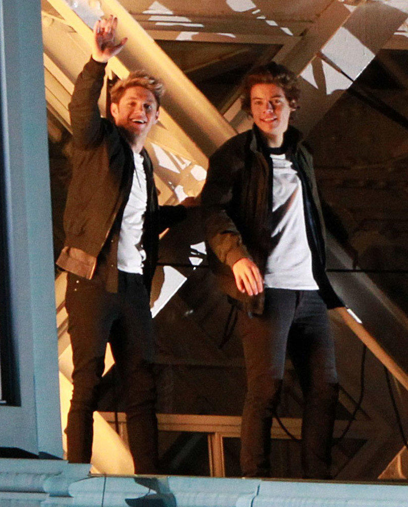 Niall Horan and Harry Styles were all smiles on the famous Tower Bridge.