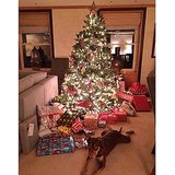 Gisele Bündchen shared a picture of her lit-up Christmas tree! Source: Instagram user giseleofficial