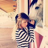 Best Celebrity Pet Instagram Pictures of 2013