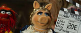 "Kermit and Piggy: Finally Saying ""I Do"" in Muppets Most Wanted?"