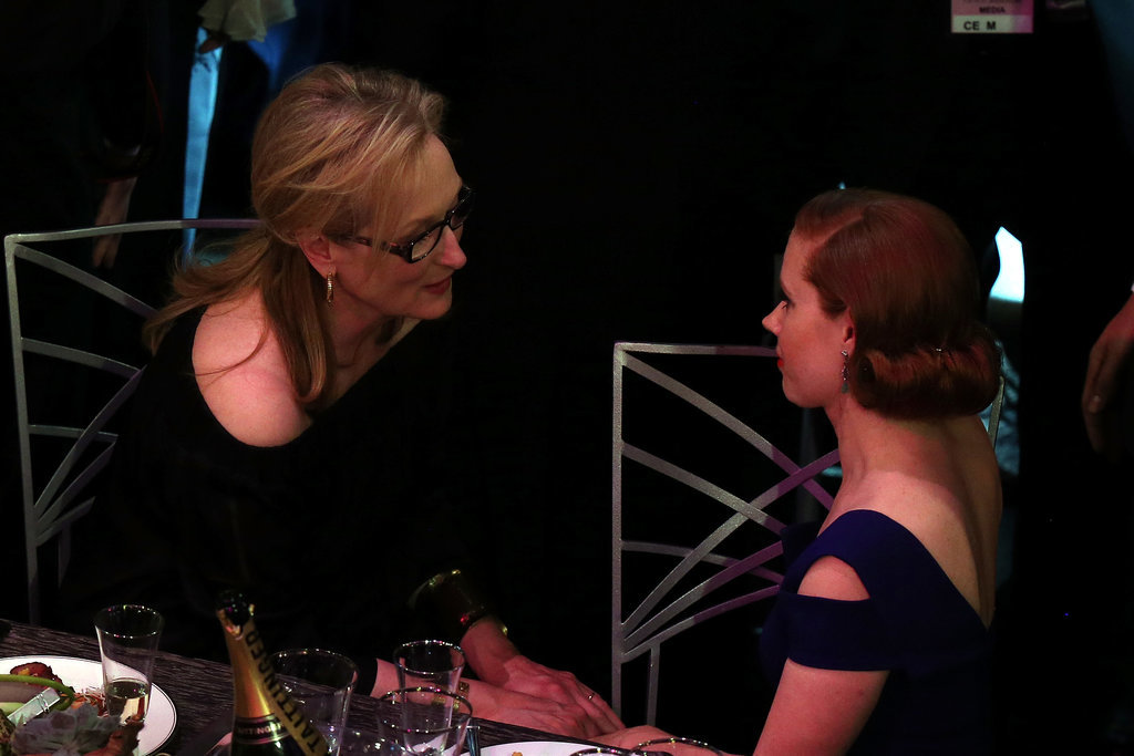 Meryl Streep talked to Amy Adams at their table.