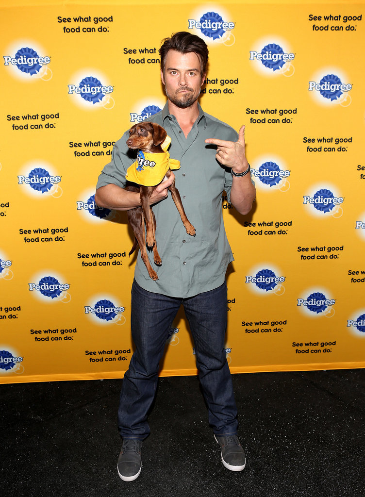 Josh Duhamel posed with a dog at the Sundance Film Festival on Monday.