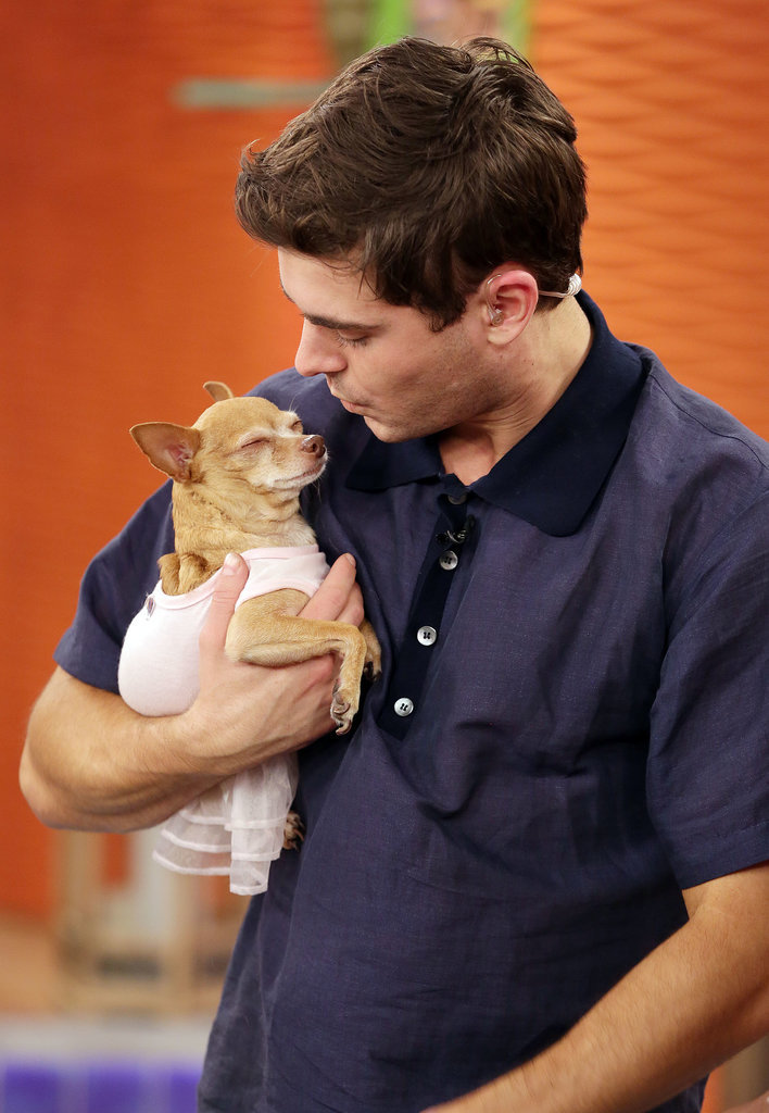 Zac Efron played with a dog in Miami while on the set of Despierta América on Friday.