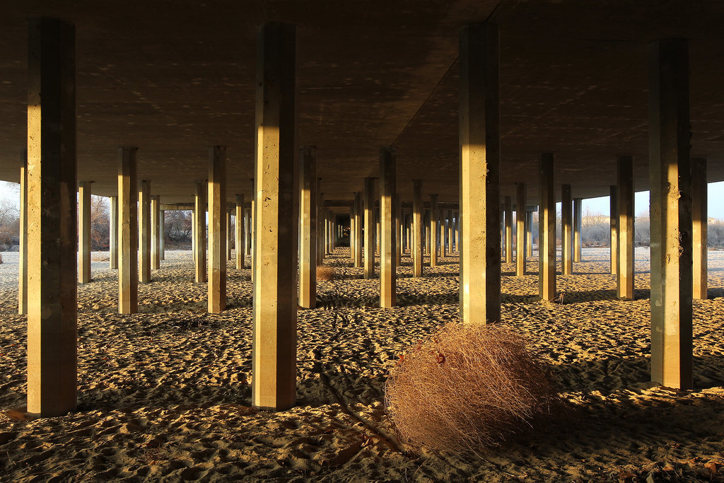 A tumbleweed blew along the sands of Bakersfield's Kern River, which is completely dried up.