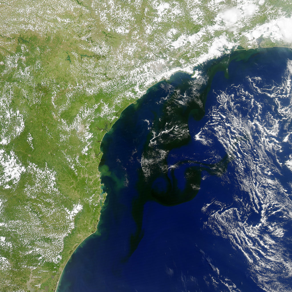 On Jan. 19, 2014, a camera on NASA's Aqua satellite took this photo of a bloom of microscopic organisms off the southeastern coast of Brazil. The dark patches are the waters of the South Atlantic stretching as much as 500 miles from south to northeast. The strands of white are clouds. Source: Jesse Allen/NASA