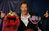 Even the Muppets Like Him