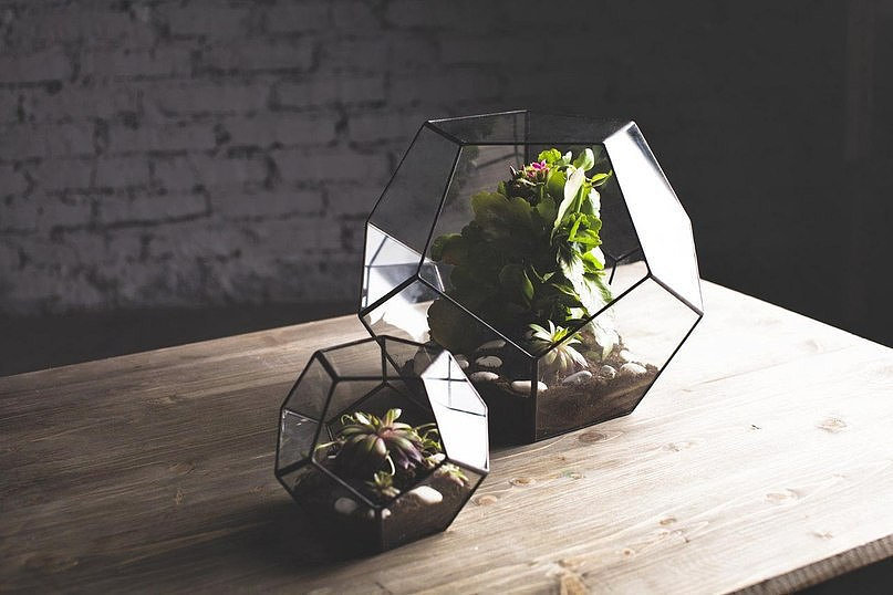 We couldn't help but do a double take when we first saw this glass terrarium ($110) appear in our Etsy feed. Not only is it a unique way to display succulents, but it's a great alternative to your table's typical centerpiece.