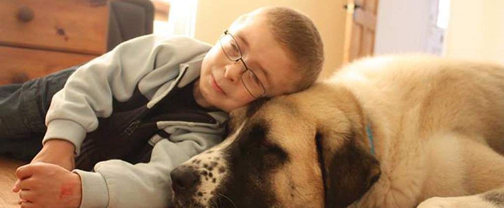 This Boy and His Three-Legged Dog Will Melt Your Heart