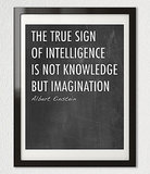 The true sign of intelligence is not knowledge but imagination ($20)