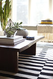 A closer look at the perfectly styled coffee table complete with succulents.   Photo by Zeke Ruelas via Homepolish