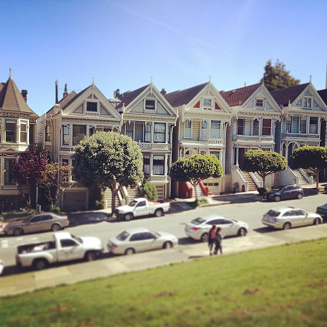 Visit the Painted Ladies