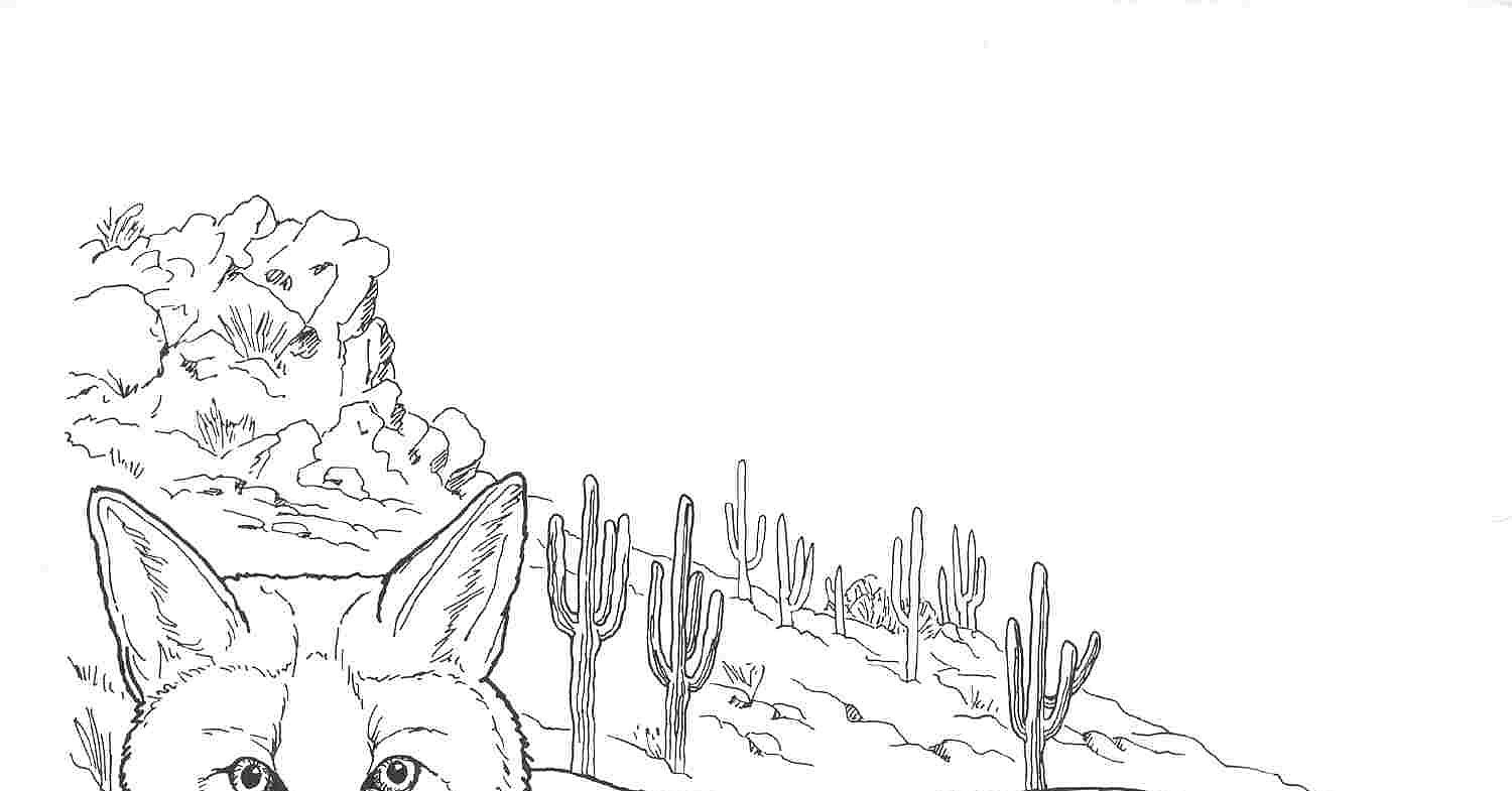 nocturnal animals coloring pages - photo#33