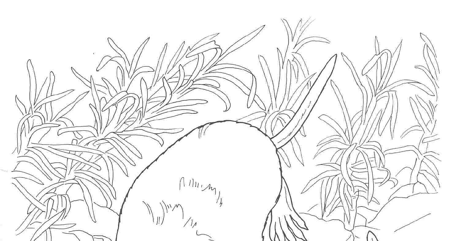 Free Coloring Pages Of Animal Habitat Animal Habitat Coloring Pages