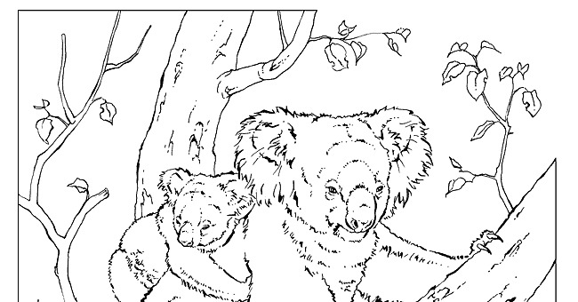 national geographic coloring book pages - photo#22