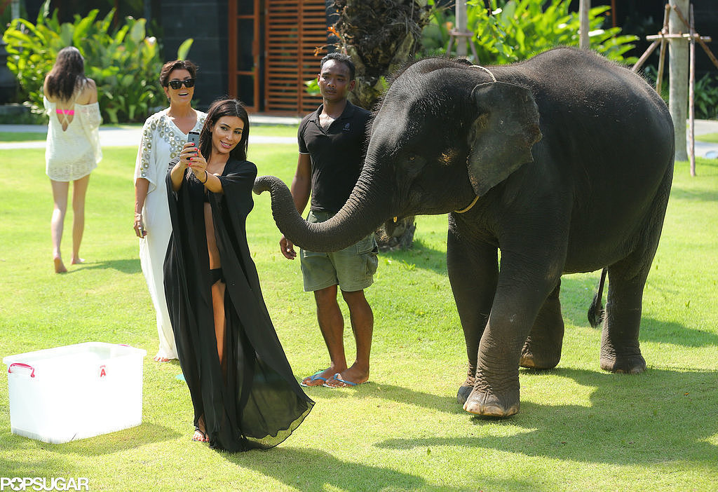 Kim Kardashian Tried to Take a Selfie With an Elephant — and Failed