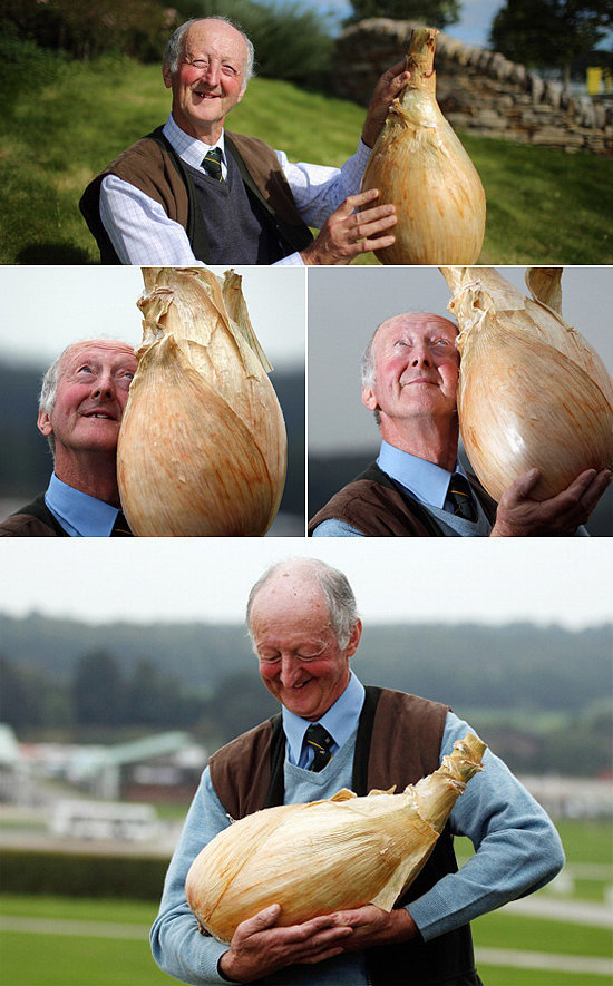 The Man Who Is So Happy With His Onion