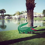 Coachella Instagram Pictures 2014
