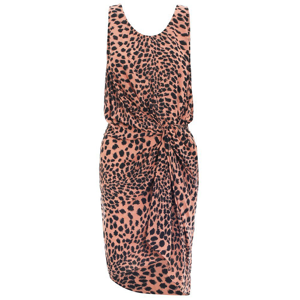 Zimmermann Leopard-Print Dress