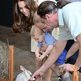 Video of Prince George at Taronga Zoo on Royal Tour