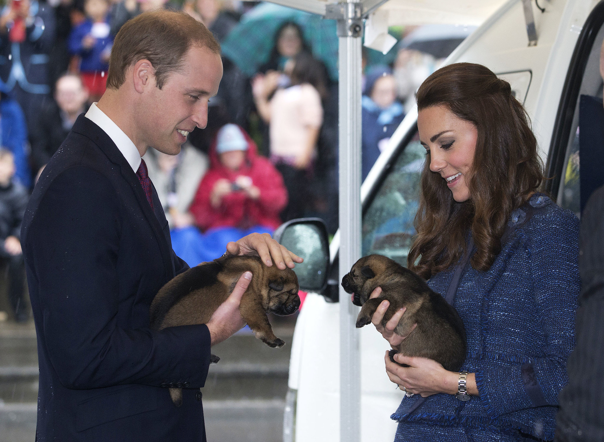 Will and Kate held puppies during their April 2014 trip to Wellington, New Zealand.