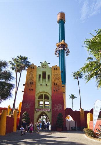 Falcon's Fury (Busch Gardens, Tampa, FL)