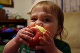 The Toddler Superfoods