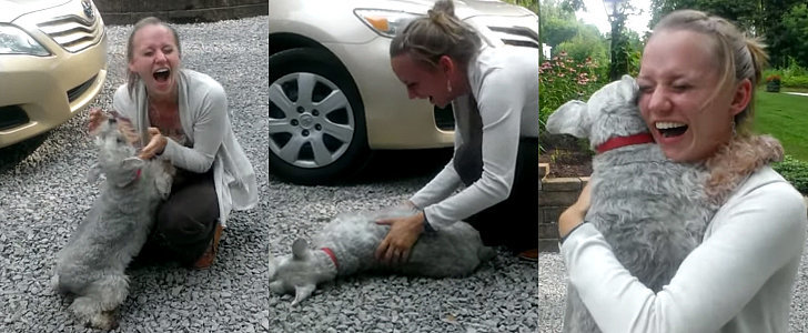 Dog Reunites With Her Owner After 2 Years and Has the Most Adorable Reaction Ever